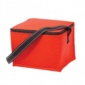 Non-Woven Lunch Buddy Cooler 4L