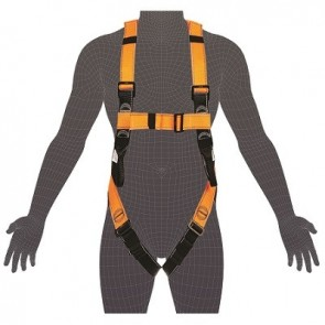 Essential Harness Standard