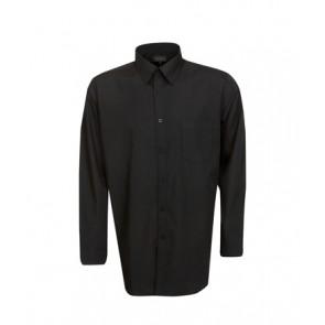 Blue Whale  Men's Poplin Business Shirt Long Sleeve