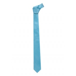 Biz Corporate Mens Slim Monotone Design Tie Alaskan Blue